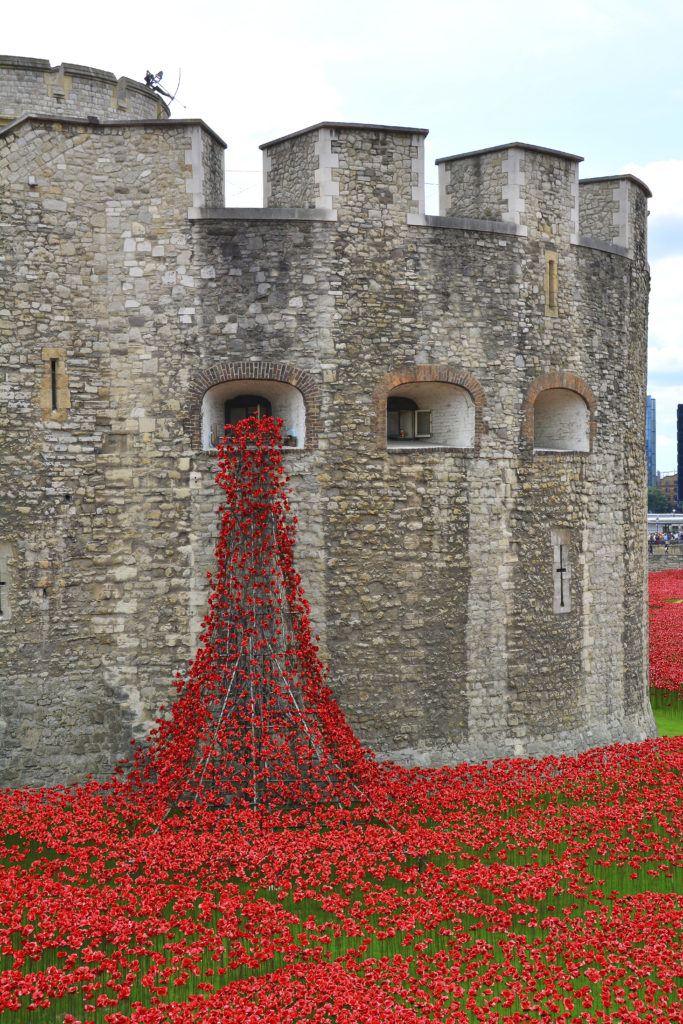 The Blood Swept Lands And Seas of Red exhibition, by artist Paul Cummins, involves 888,246 ceramic poppies planted in the dry moat at the Tower. A poppy has been made for each British and Colonial death during the conflict. The final one due to be installed on Armistice Day.